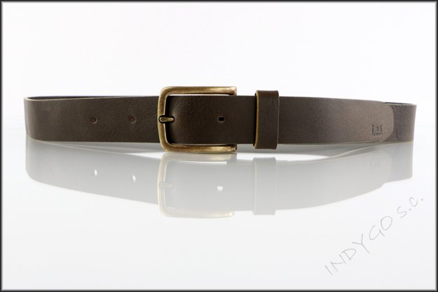 LEE PAINT BELT DARK BROWN LF245324      $